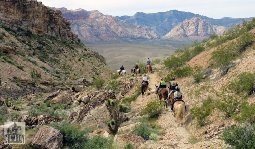 A Horseback Ride From Cowboy Trail Rides Offers A Unique Experience In Nevada's Red Rock Canyon