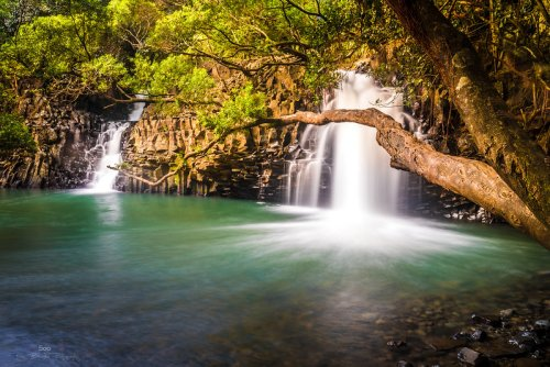 Hike Less Than A Mile To This Spectacular Waterfall Swimming Hole In Hawaii