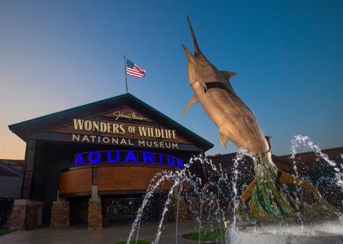 Wonders of Wildlife National Museum Aquarium In Missouri