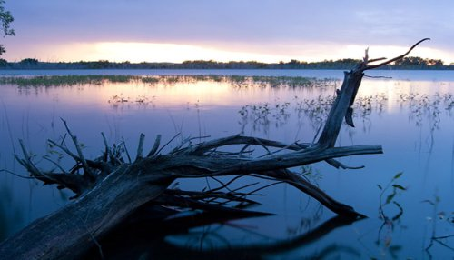 The Whole Family Will Love A Visit To The Lakeside Calamus State Recreation Area Campground In Nebraska