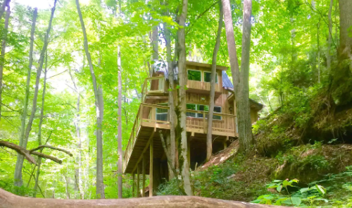 Sleep Among Towering Oaks And Pines At The Sugar Creek Tree House In North Carolina