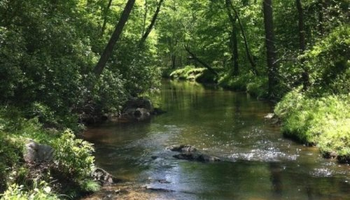 Spend The Perfect Day Outdoors At Prince William Forest Park, Virginia's Little-Known National Park
