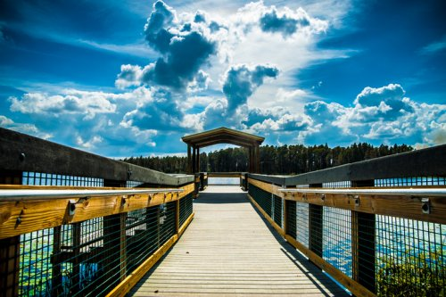 You'll You'll Have A Front Row View of Lake Louisa State Park, Florida in These Cozy Cabins