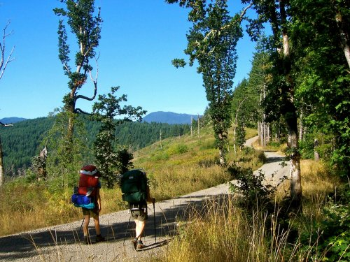 50 Years In The Making, The Corvallis-To-The-Sea-Trail Just Opened - And It's An Epic Oregon Adventure