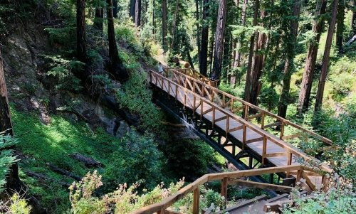 A Redwood Hiking Trail That Leads To A Waterfall In Northern California Has Re-Opened After 13 Years