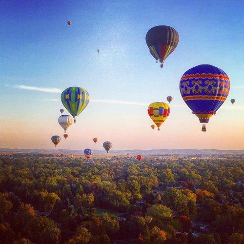Hot Air Balloons Will Be Soaring At Washington's Walla Walla Balloon Stampede