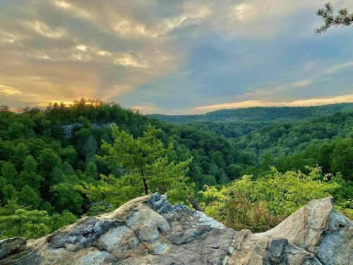 Pogue Creek Canyon State Natural Area In Tennessee Has Some Of The Most Stunning Scenery In The State