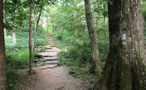 This 1-Mile Loop Might Just Have The Best Views In All Of Virginia's Shenandoah National Park