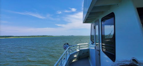 Most People Have No Idea This Historic $5 Ferry In Georgia Even Exists