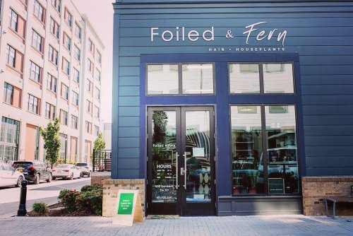 Plant Lovers Will Adore Downtown Nashville's Newest Plant And Decor Shop, Foiled Fern