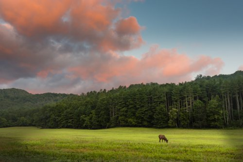 The Cataloochee Valley In North Carolina Is One Of The Most Remote Parts Of The Great Smoky Mountains National Park