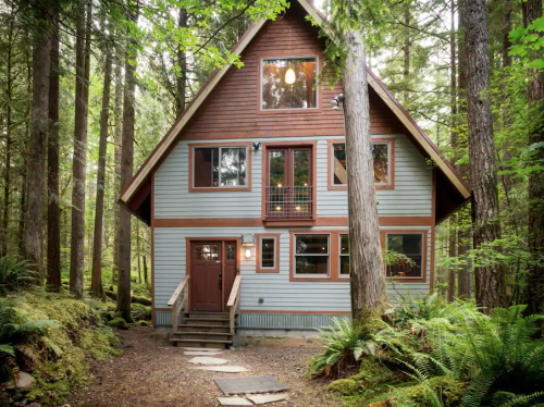 Relax At This Cozy Treetop Cabin With A Hot Tub Right Here In Washington