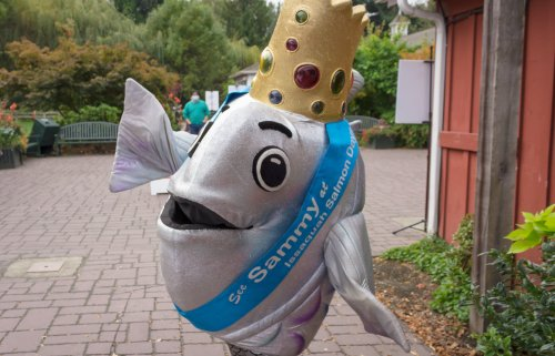 Celebrate The Pacific Northwest At This Fishy Fall Festival In Washington