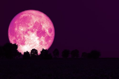 Don't Miss The Last Super Moon Of 2021 - A Full Strawberry Moon Will Appear Over Your State This Month