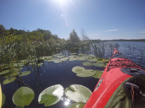 Paddle A Hidden Wisconsin River That Will Take You Into A World That Few Visit
