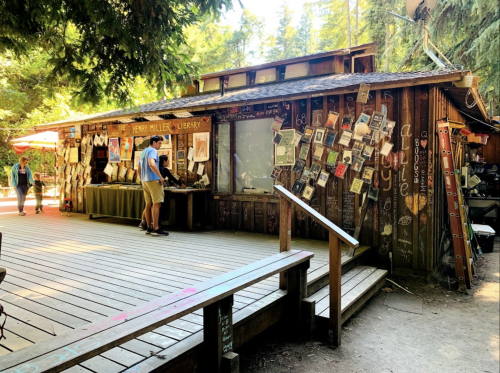 Few People Know About This Little Bookstore Tucked Away In The Redwood Forest In Northern California