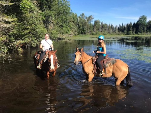 Visit Wildcat Lake By Horseback On This Unique Tour In Wisconsin