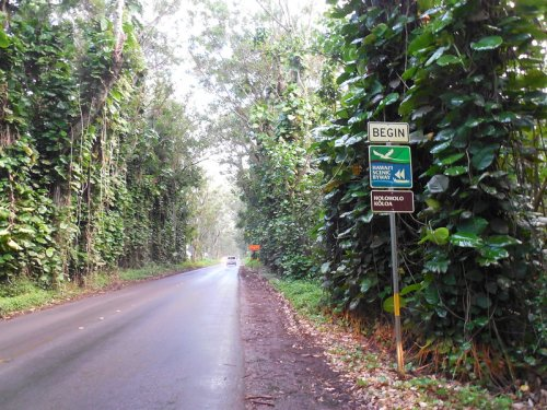 Hop In Your Car And Take Holo Holo Koloa Scenic Byway For An Incredible 19.5-Mile Scenic Drive In Hawaii