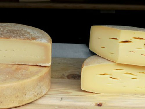 Cheese You Can Eat Even If You're Lactose Intolerant