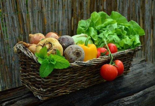 "What Is ""Pegan""? The Paleo Vegan Diet Explained"