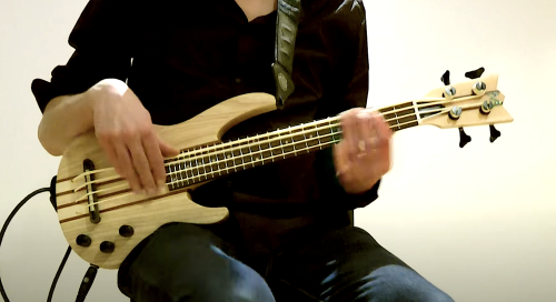 Bass Sounds: One Song Highlights the Many Different Sounds Made by Different Bass Guitars