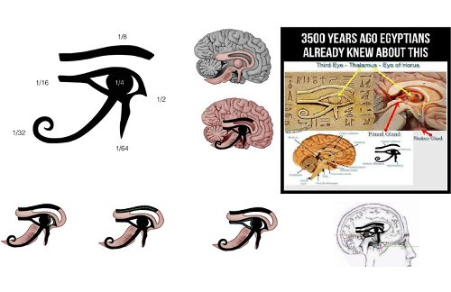 The Pineal Gland & The Eye of Horus - Ophthalmology Breaking News