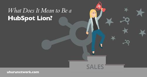 HubSpot Bootcamps: How To Transform Into a HubSpot Lion