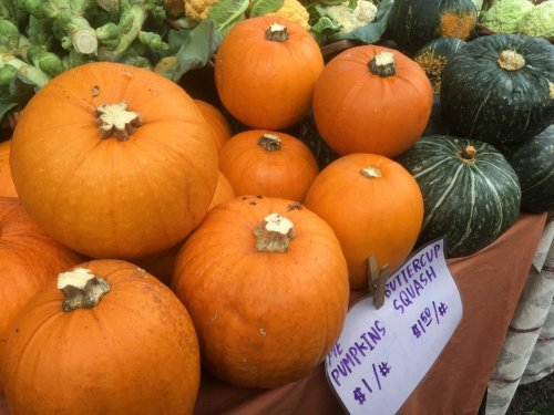 20 pumpkin and squash recipes to spice up your October