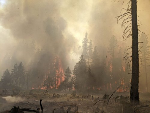 Massive Bootleg fire now 74% contained; evacuations lifted in Northern California
