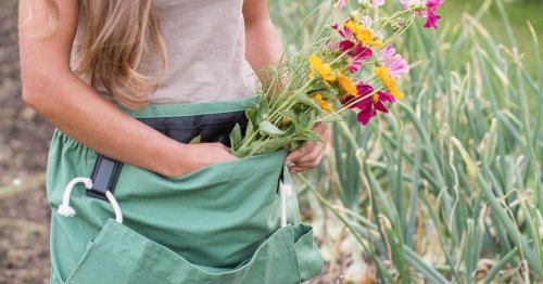The 15 gardening tools you should own to get your backyard in shape for summer