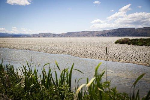 Tule Lake emptied to improve habitat, fight disease