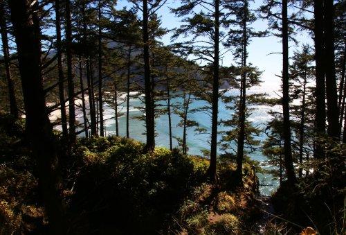 The 12 best hikes on the north Oregon coast