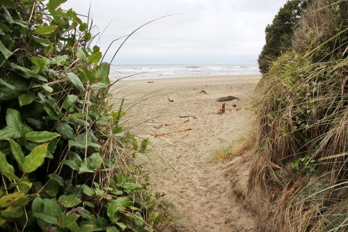 Hobbit Trail is a small adventure on the central Oregon coast