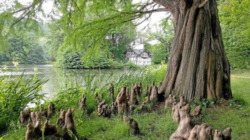 Wanderfreunde Pößneck zieht es in den Greizer Park