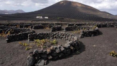 Die Aromen der Vulkaninsel Lanzarote