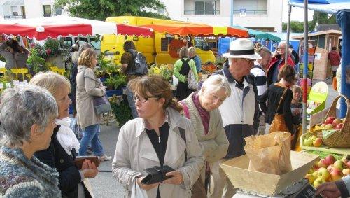Que faire ce week-end dans le pays de Vannes ?