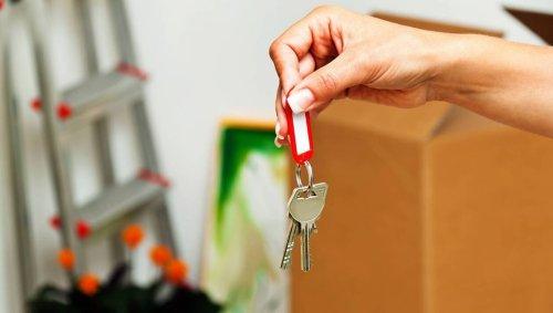 Si le locataire se plaint, qu'il soit responsable ou non, le propriétaire doit intervenir