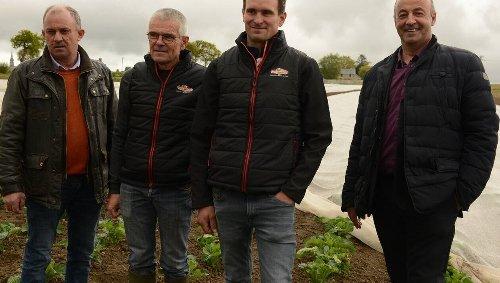 Agriculture. La marque Prince de Bretagne se veut « durable et responsable »