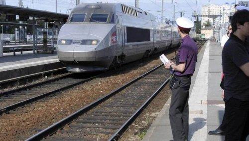Toulouse. Un père de famille maîtrise un homme armé d'un couteau dans un TGV