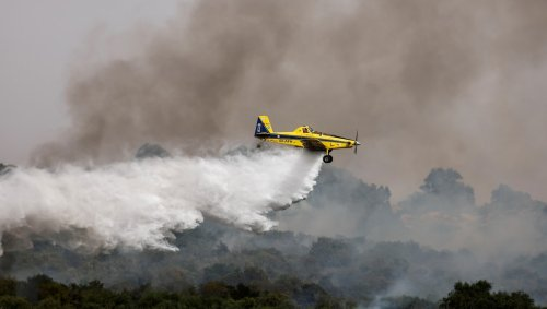 Israël. Des ballons incendiaires provoquent des incendies, la moitié la zone de pêche de Gaza réduite