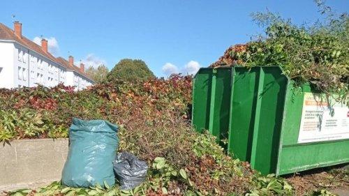 Le Mans. « Les bornes de collecte de déchets verts sont trop souvent souillées »