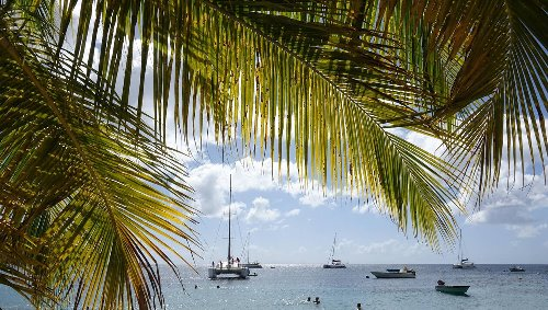Martinique. La série «Tropiques Criminels» au cœur d'une polémique autour d'une subvention