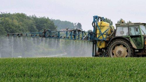 Pesticides. Le cancer de la prostate bientôt reconnu comme maladie professionnelle pour les agriculteurs