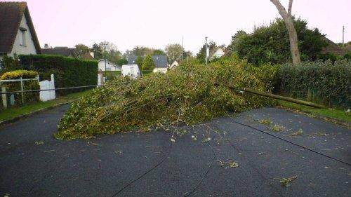 Coupures d'électricité, trains à l'arrêt… Le bilan de la tempête Aurore en Normandie