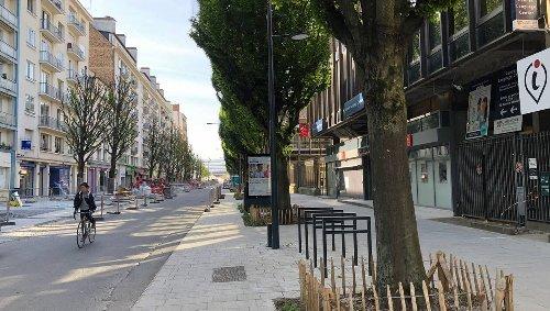 Rennes. Le Conseil d'État se prononce sur le devenir des charmes de l'avenue Janvier
