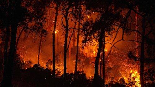 EN IMAGES. Turquie, Grèce, Italie, Espagne…. Les flammes ravagent le sud de l'Europe