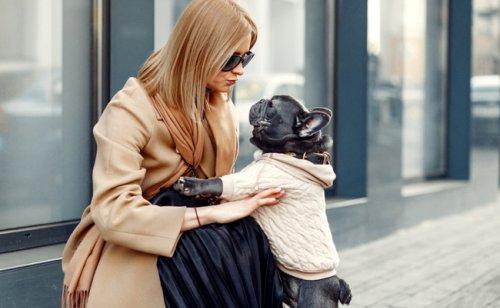 Faut-il habiller son chien pendant l'hiver ?
