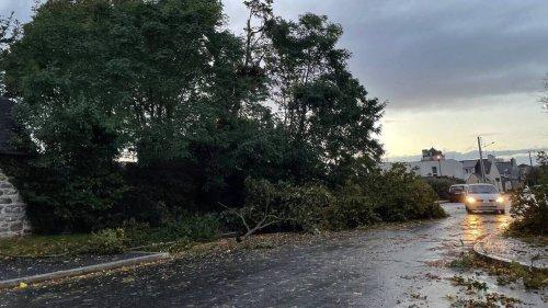 DIRECT. Tempête Aurore : trois départements en vigilance orange, 250 000 foyers privés d'électricité