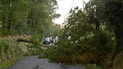 DIRECT. Tempête Aurore : 250 000 foyers sans électricité, de nombreux dégâts