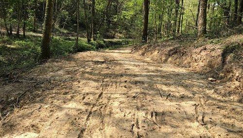 « Déboisement abusif » en Mayenne : France Nature Environnement n'exclut pas de porter plainte